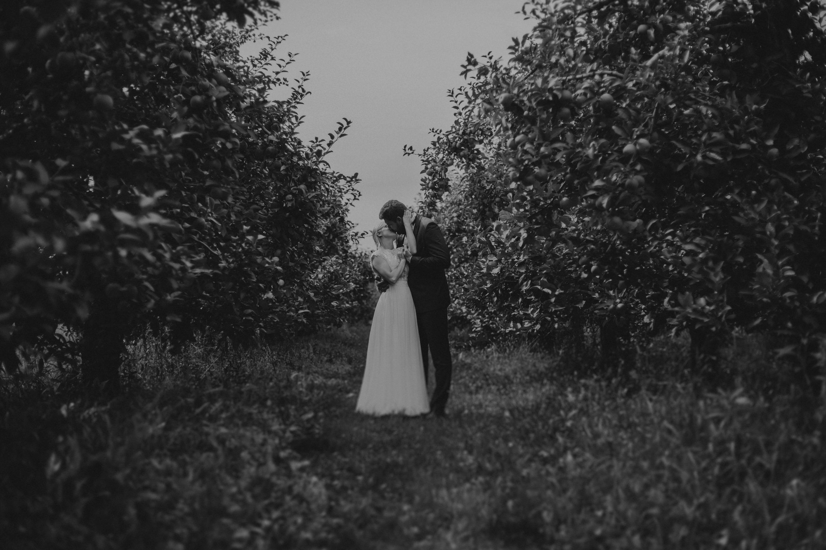 profesjonalne zdjęcia ślubne