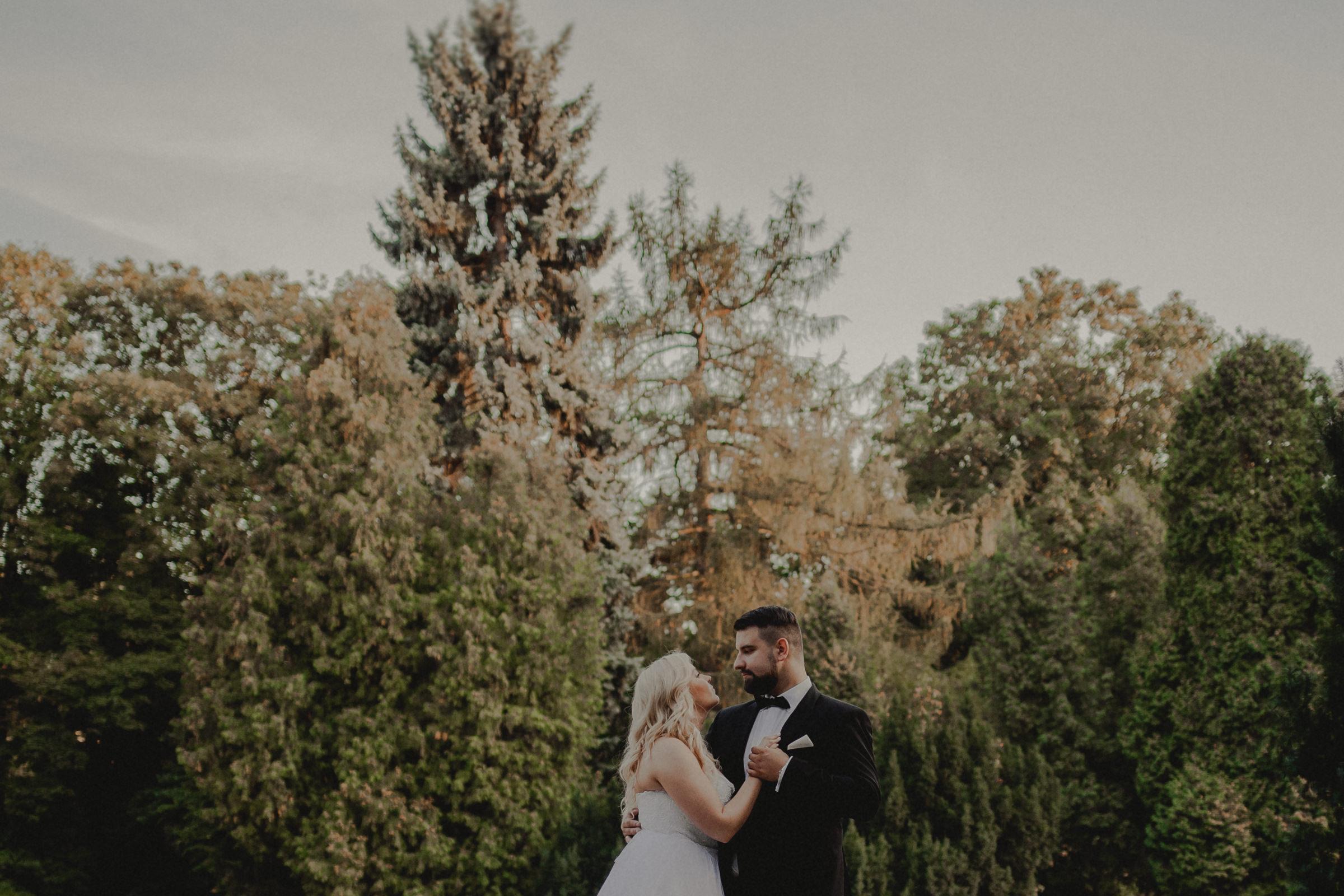 kadrowanie fotografia ślubna