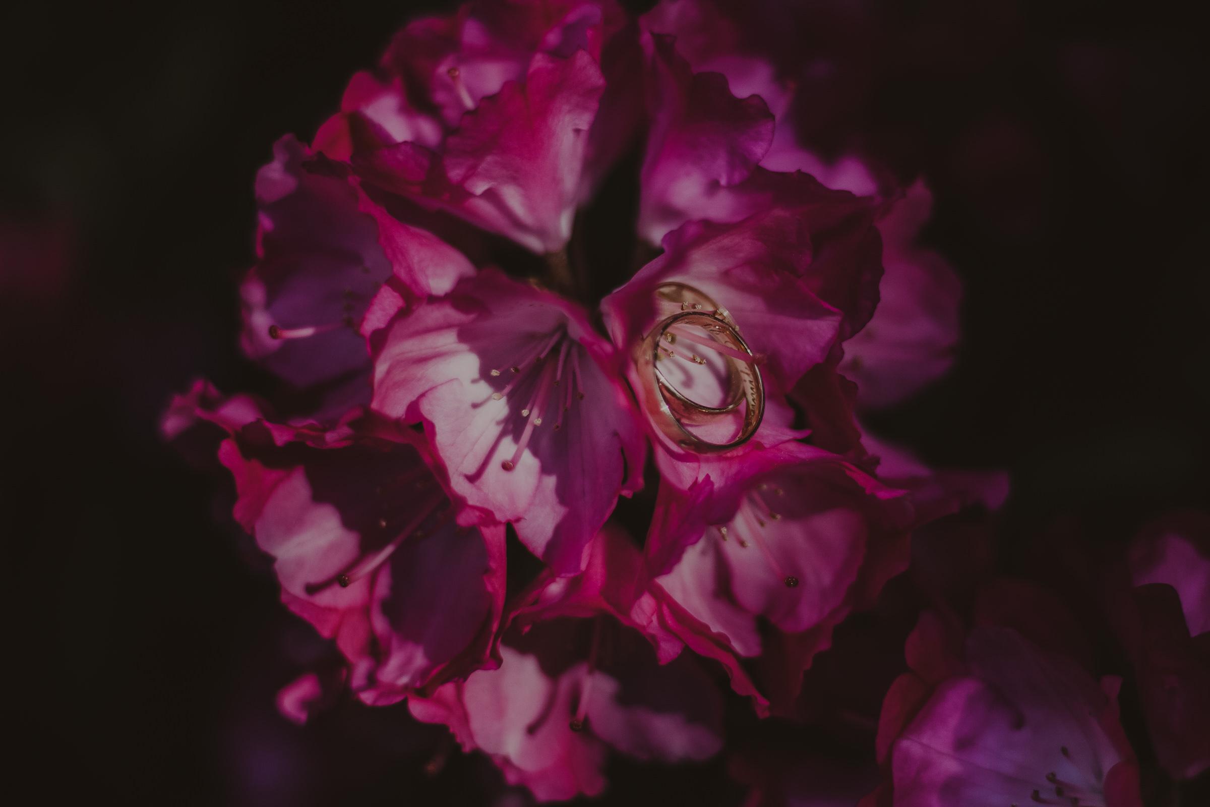obrączki ślubne w kwiatach