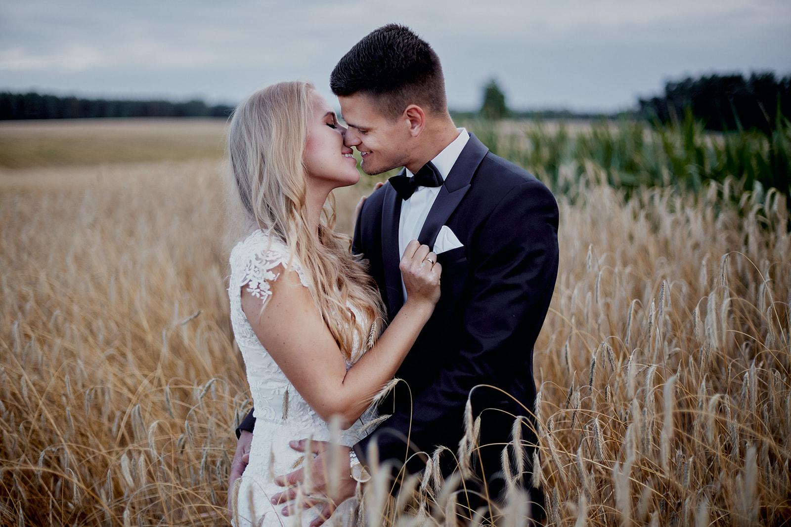 Sesja ślubna w zbożu i słonecznikach