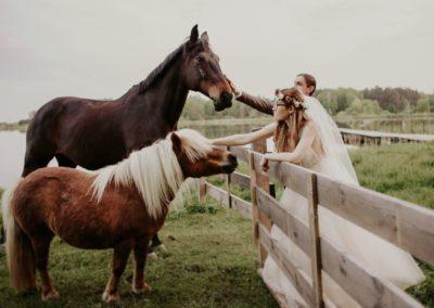 sesja ślubna z koniami