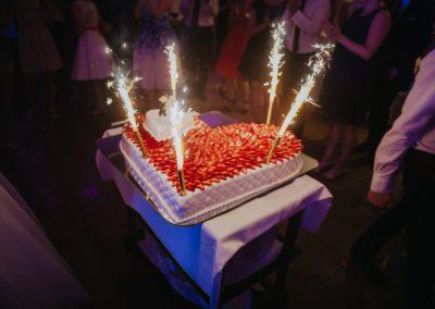 sesja-slubna-tort-0996