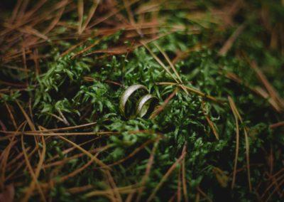 obrączki w lesie