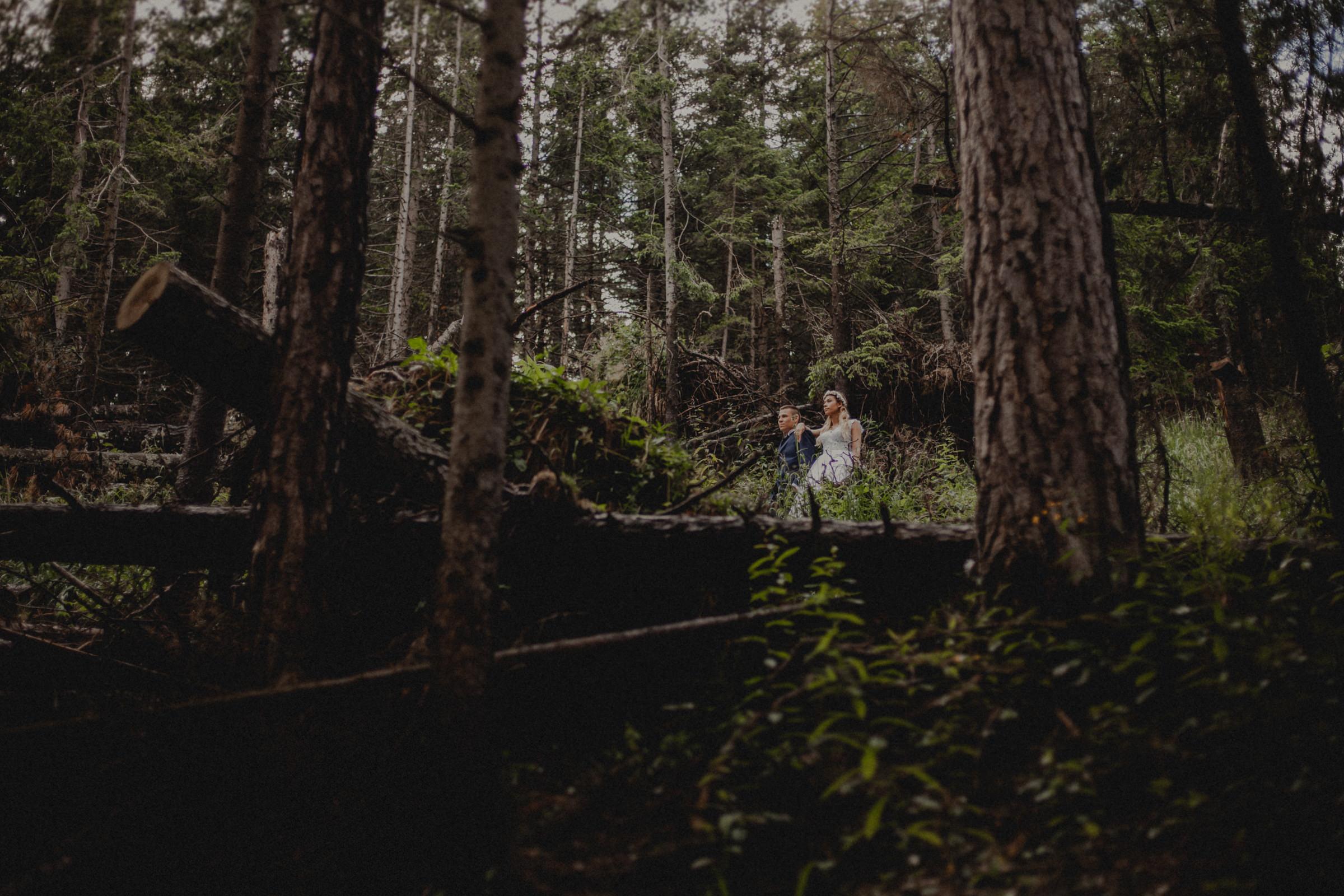 sesja ślubna w lesie w górach