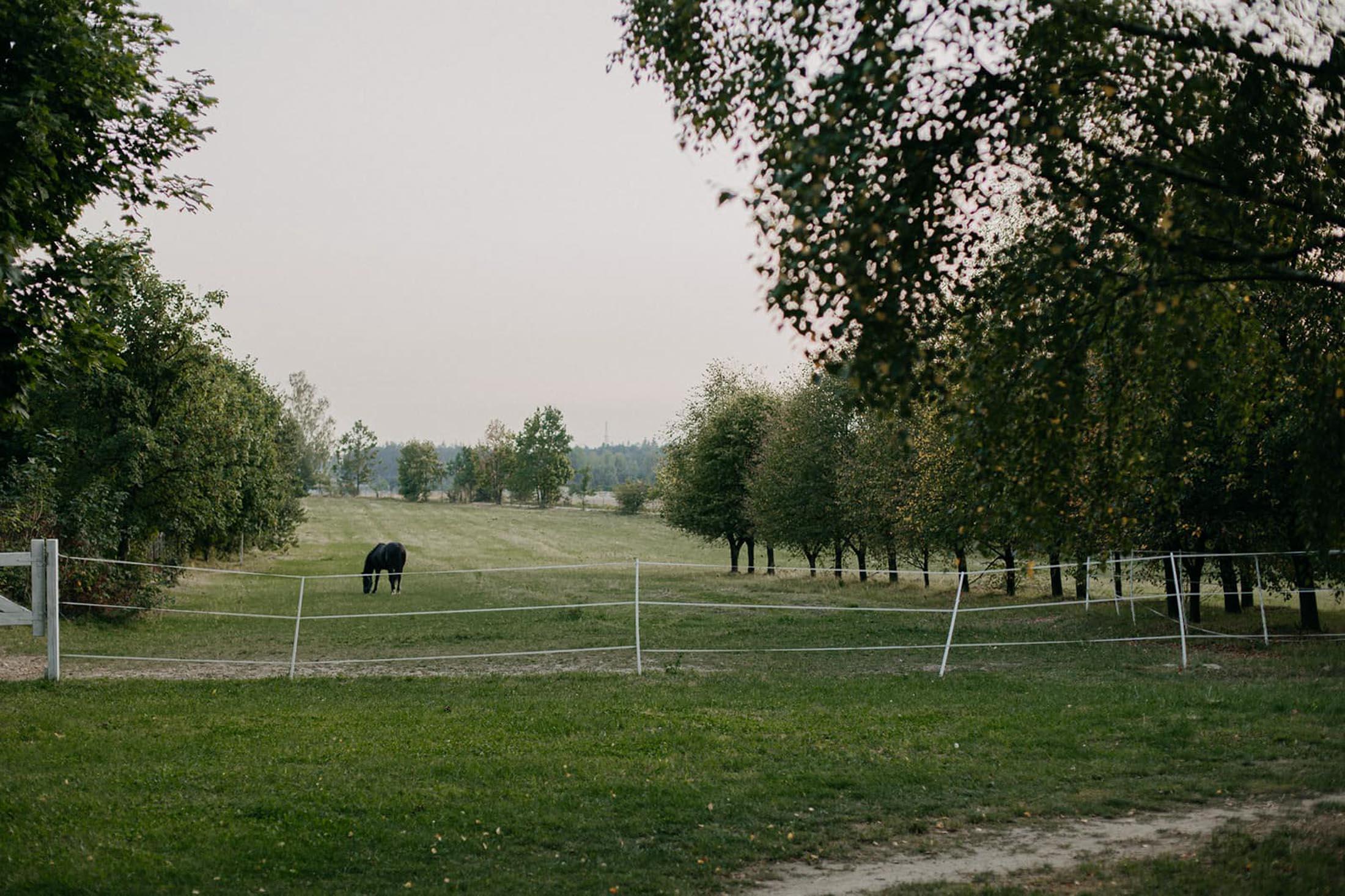 folwark tworzyjanki konie