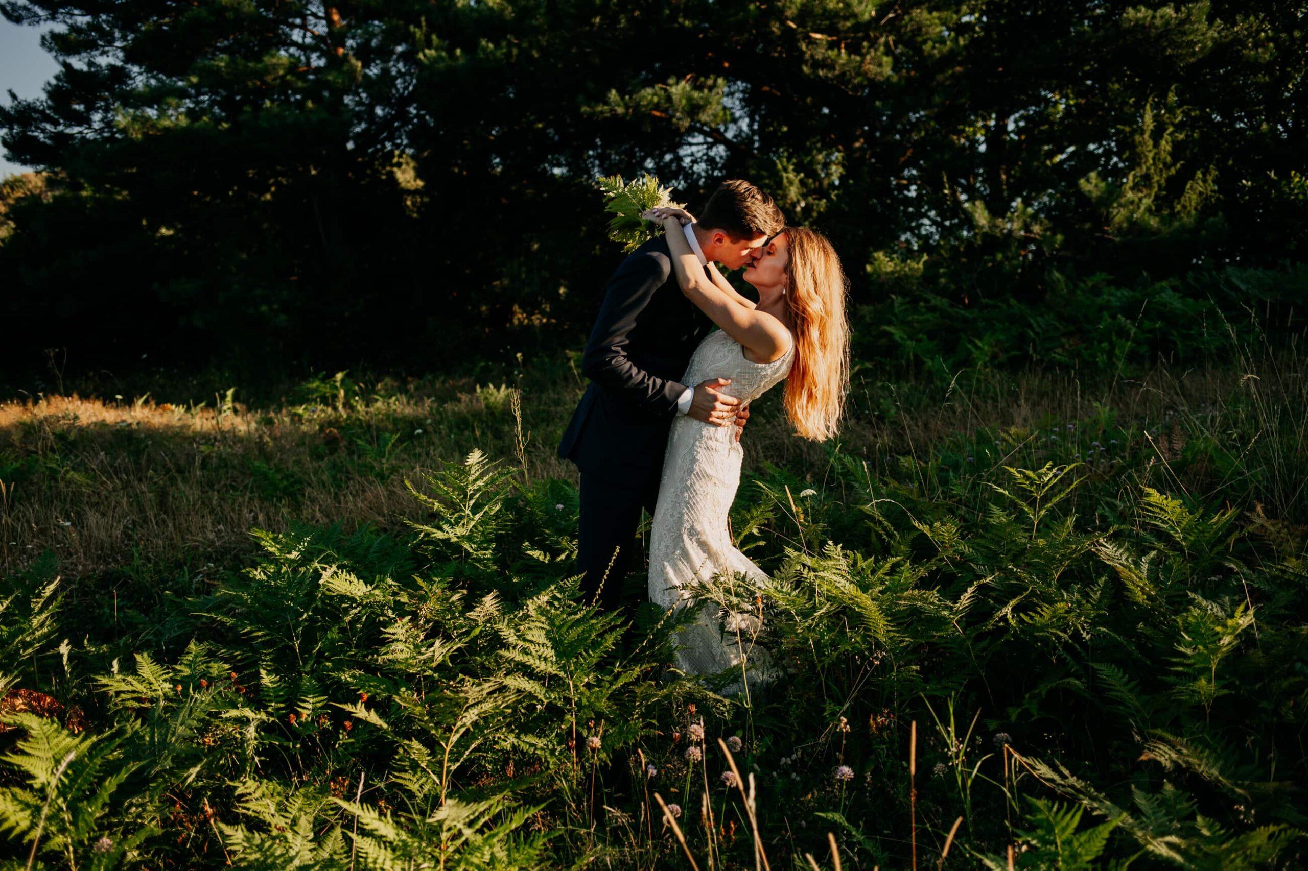 sesja ślubna w paprociach