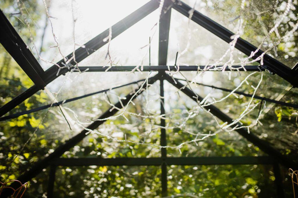 Szklarnia w lesie - sesja narzeczeńska