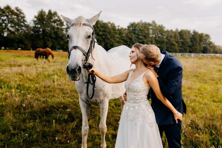 sesja ślubna z końmi